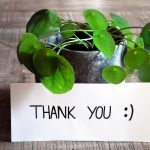 thank-you-3690116_1920